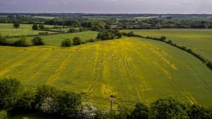 Bunwell-Hill-Bunwell-Norfolk-1
