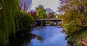 Church-Green-Bramford-Suffolk-1