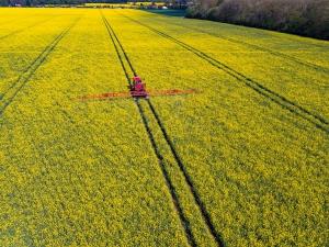 Clopton-Green-Rattlesden-Suffolk-4