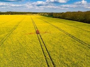 Clopton-Green-Rattlesden-Suffolk-5