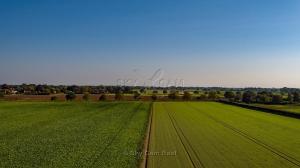 Goat-Ln-Strumpshaw-Norfolk-1